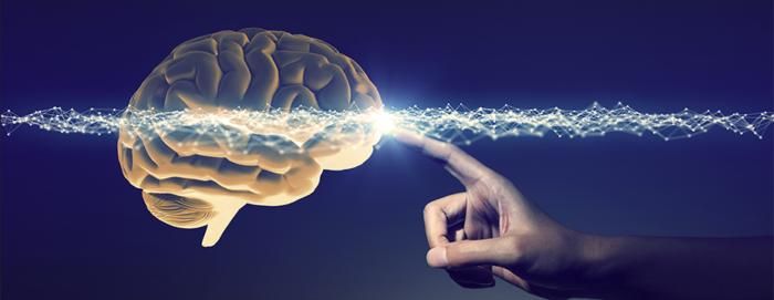 5 razões para aplicar a Neurociência na gestão de pessoas da sua empresa